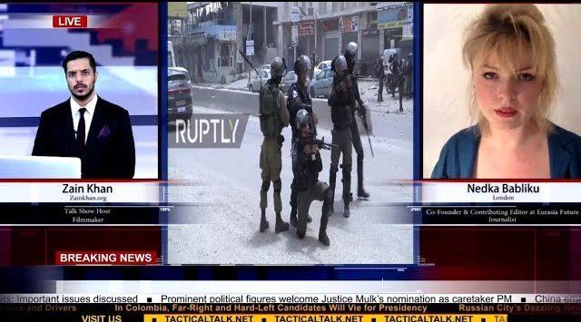 The Israel-Palestine conflict and Erdogan's reaction   Zain Khan & Nedka Babliku
